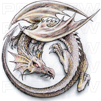 Winged Dragon Tattoo Design